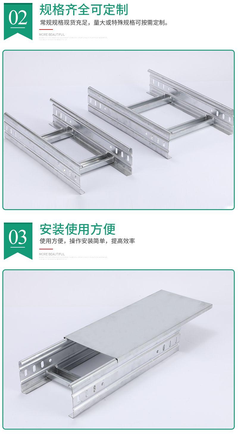 大跨距梯式桥架图片1